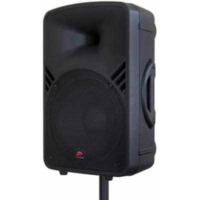 "JB SYSTEMS PPA 121 Enceinte portable filaire 12"" 250W RMS MP3-player, FM radio, 2mic + 1line in"